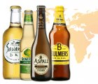Probier-Paket Cider Around The World 5,5% vol 4-tlg./1St